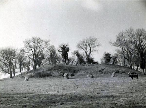 The Sacred Island  Newgrange  Bru na Boyne  The Boyne Valley