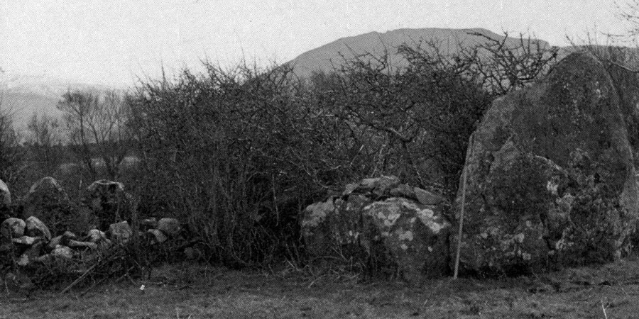 The megalith in Cartronplank called Toomnafoirmoire.